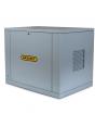 Генератор газовый Gazvolt Pro 17000 Neva