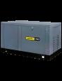 Генератор газовый Gazvolt Pro 10000 Neva