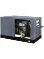 Генератор газовый Gazvolt Pro 12000 Neva